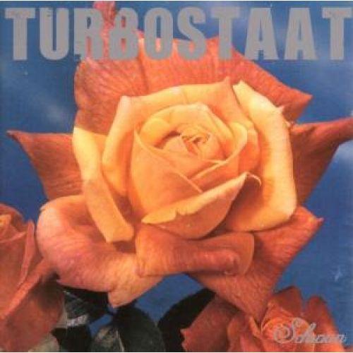 Turbostaat Schwan LP